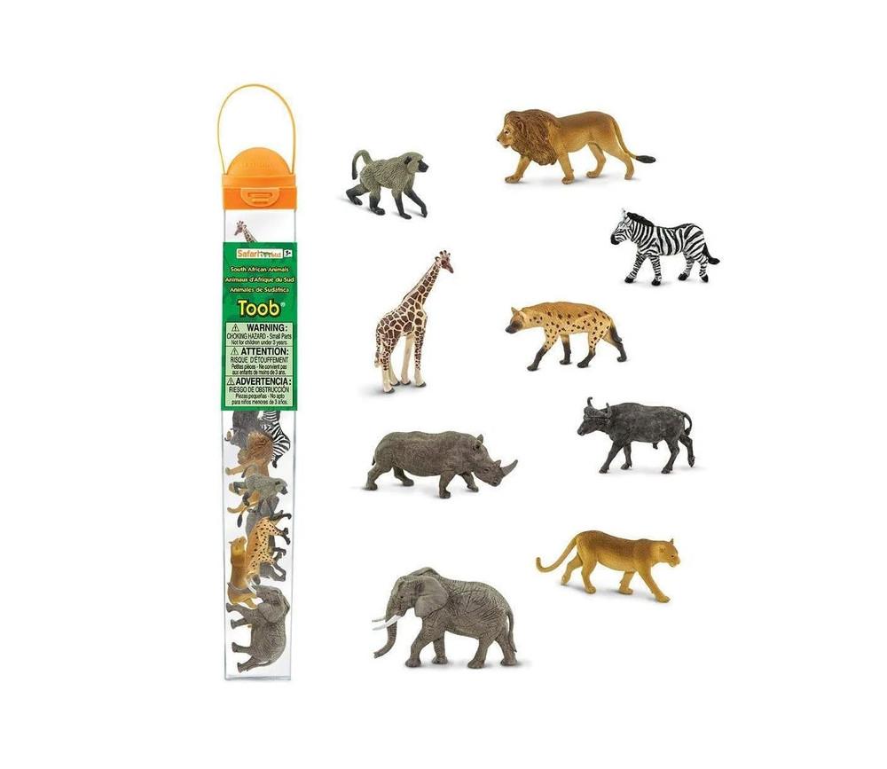 12 Animaux Sud Afrique dans un tube de rangement