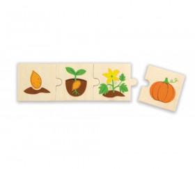 6 Puzzles en bois 4 pièces cycle de vie d'une graine