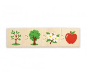 6 Puzzles en bois 4 pièces cycle de vie d'un pommier