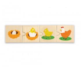 6 Puzzles en bois 4 pièces cycle de vie d'une poule