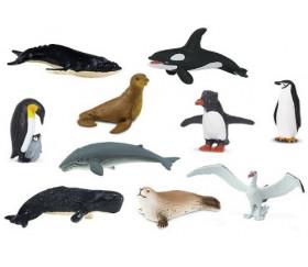 Figurines Antarctique - 10 animaux dans un tube