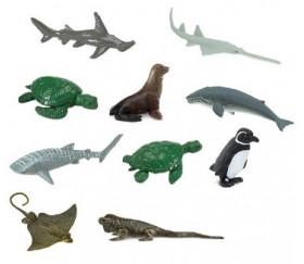 10 Animaux en danger - espèces marines menacées dans un tube de rangement