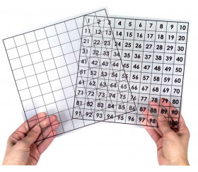 Grille transparente 100 cases 20x20 cm